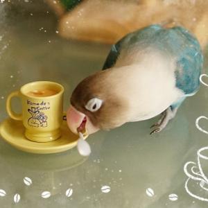 キャンドゥの鳥グッズ&コーヒーブレイクミルたん