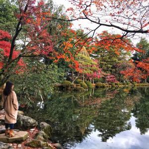 兼六園に行ってきました♡美しい紅葉