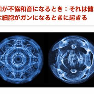 【 すごい発見 細胞から音が出ている??】