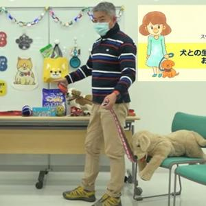 『犬との生活 もっと楽しく』