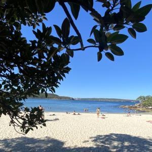 シドニーのビーチは今日も優しい。こんな時だからこそグラウンディングを!