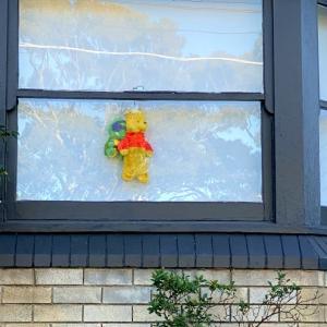 窓辺のくまさん。
