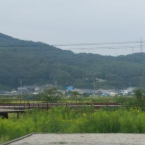 笠岡 moja mountain