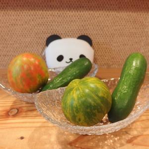 禁煙立呑みゼファー食堂@神戸・東川崎交差点角「グリーンゼブラトマトと超ミニきゅうりなラリーノの出汁和えサラダが特におすすめやねん!」