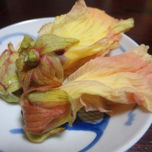禁煙立呑みゼファー食堂@神戸・東川崎交差点角「コバタノウエンさんの美味い花オクラを数量限定でご用意するねん!」