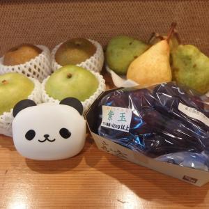 禁煙立呑みゼファー食堂@神戸・東川崎交差点角「お生搾り(フレッシュフルーツの手づくりチューハイ)のラインナップは随分と秋めいてきてん!」
