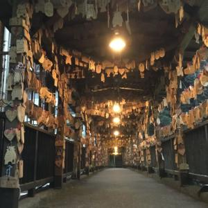 熊本県小国町(4)、杖立温泉に再訪