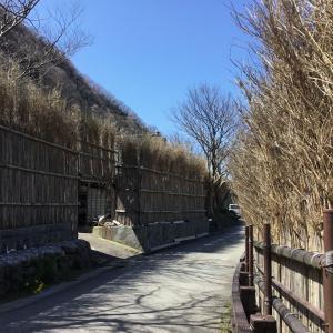 石川県輪島市、間垣に囲まれた上大沢集落