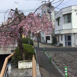 栃木県宇都宮市、赤線跡〜江野町横丁再訪