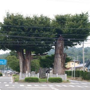 木曽義仲ゆかりの地:岡田神社