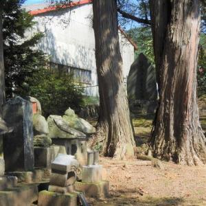 木曽義仲ゆかりの地:樋口次郎兼光墓