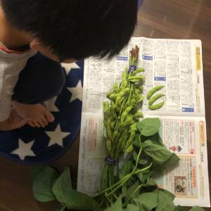 【モンテッソーリ】五感を使って言語を学ぶ