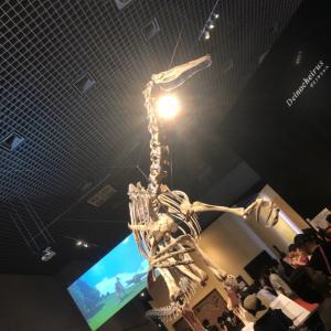 恐竜博へ行ってきた!