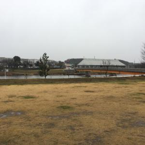 あぁ〜寒い、雨〜の雪印旛新川…。