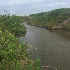 新利根川.破竹川最上流と柴崎水門付近の水路