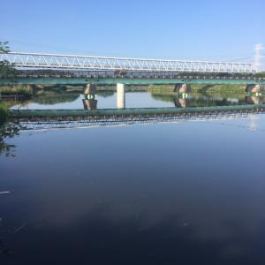 印旛新川.平戸橋〜逆さ水橋間