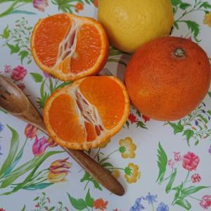 食べると日焼けするフルーツ