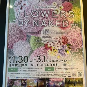 Flowes by naked