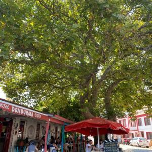 Bozcaada.ボズジャ島の町、散策