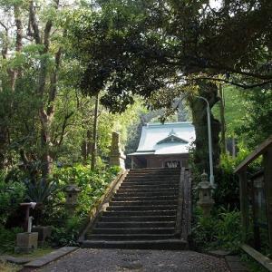 神社とトビウオ。