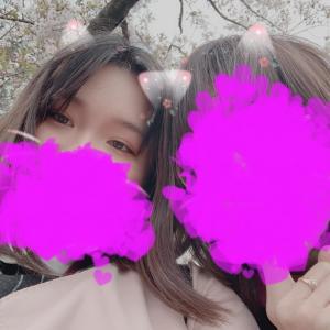 桜が一番好きです♡