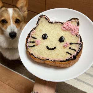 ねこねこ食パンとレオ