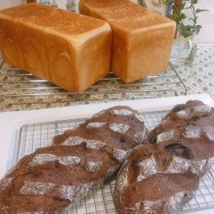 2種類のパンが焼き上がりました♫