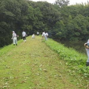 ため池の草刈り ・・・ 多面的機能支払制度