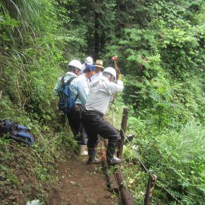 百年の森で遊歩道の補修