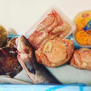 函館 有限会社マルショウ小西鮮魚店『コロナ勘弁してくださいボックス』帆立貝