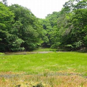 白滝山 (3) ~まとめ : 滝・池・沢を楽しむコース~