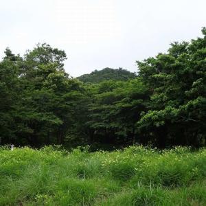 弥高山 (1) ~城跡と寺跡を巡り昔を偲ぶコース~