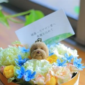 お花のケーキと年賀状。