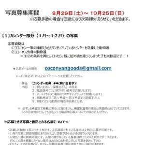 【拡散希望】2021年チャリティーカレンダー画像募集開始!(8/29~)