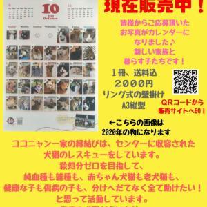 【拡散希望】カレンダー画像募集、締切間近!