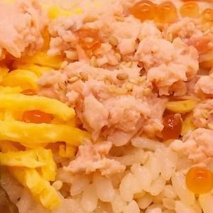 鮭とイクラご飯