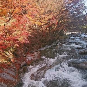 紅葉の鮫川渓谷行って来ました! さわやかな秋のムードをお楽しみ下さい。