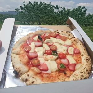 皇室献上桃ピザ、もう少し待って下さい!だってまだ桃が出来ていないんですから~。桑折町レガーレpizza sta行って来ました!