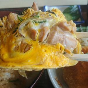 おいしい親子丼、どうでしょう!ちょっと一度に食べすぎじゃん、どんぶりの聖地、須賀川市 美濃(みの)行って来ました!