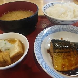 結局これだね!本日のランチ、サバの味噌煮と厚揚げの煮物 やっぱ味噌煮はおいしいね、今日もまんぷく、まんぷくでしたよ。