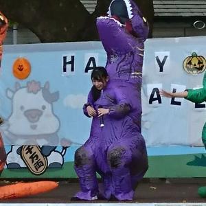 アイドルイベント、ハロウィーン in 岩瀬牧場 パート2 お楽しみ下さい!