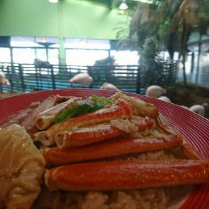 これは可愛い!フラミンゴ レストラン「メヒコ」で「名物カニピラフ」食べて来ました!