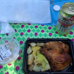 ピクニック行ってきましたー。