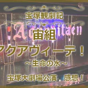 宙組「アクアヴィーテ」感想!客席降りにウィスキーグラスは必須?@宝塚大劇場