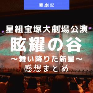 星組『眩耀の谷~舞い降りた新星~』感想!(ネタバレあり)