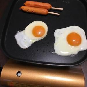 おうちにいる