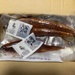 土用の丑の日にまだ間に合った飯塚市のふるさと納税返礼品