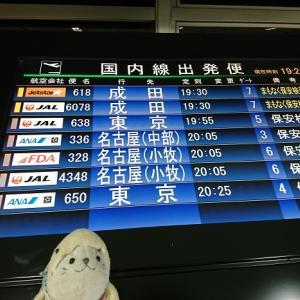 【熊本県益城町】熊本名物が目白押し!阿蘇くまもと空港からいよいよ離陸。