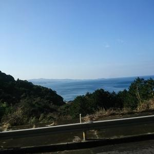 【長崎県南島原市】美しい景色の島原半島でイルカウォッチング!?漁船に揺られて天草半島へ!