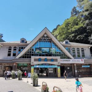近場で夏休み、高尾山に行ってきました。